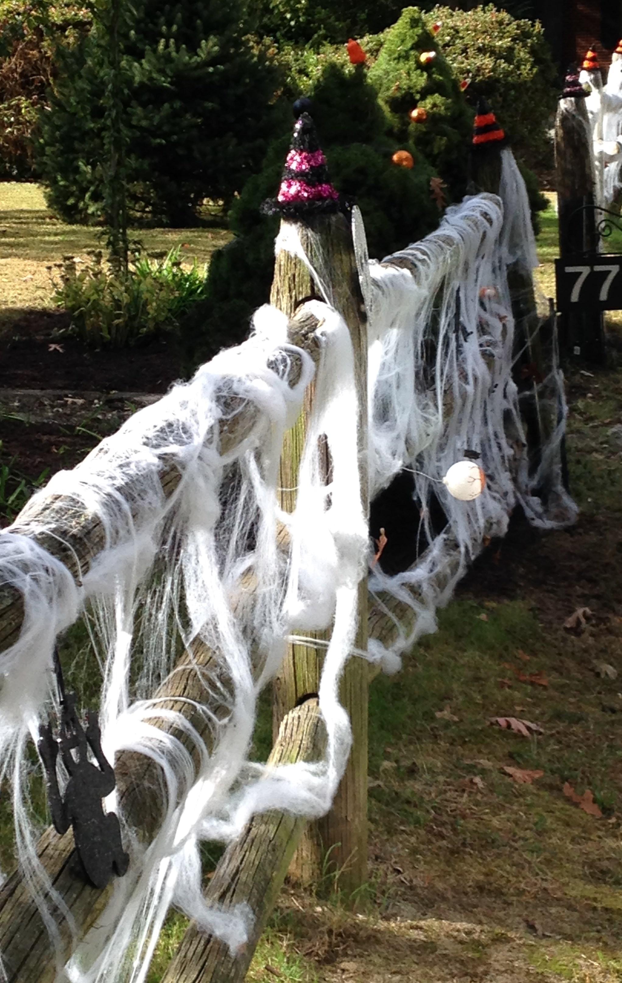 Blog - Halloween 2