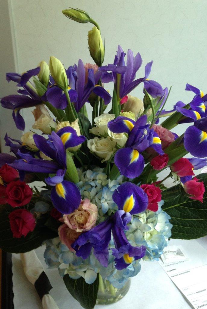 Blog - Hospital - Irises
